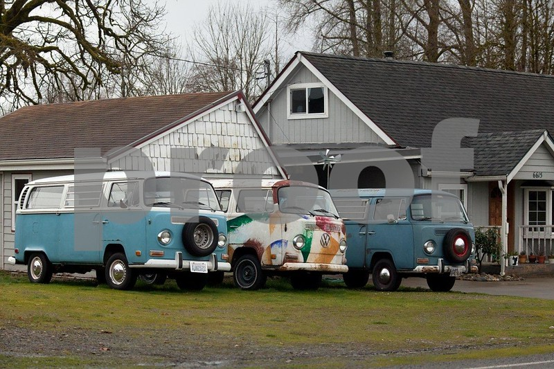How many people have three VW buses in their front yard?  Littlerock, WA
