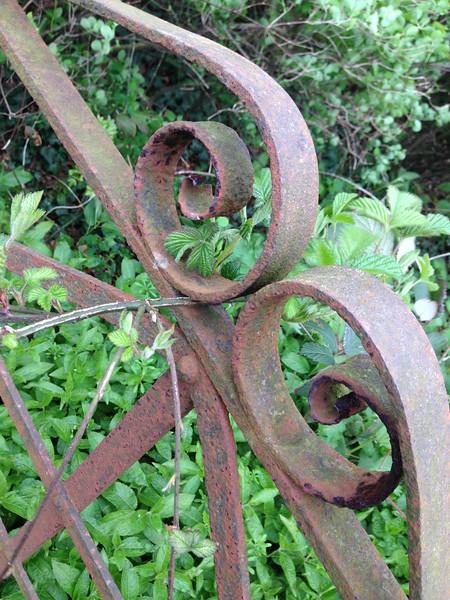 Rusty gate KBF