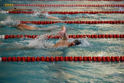 Swimming: Freedom vs. Potomac Falls 12.06.14