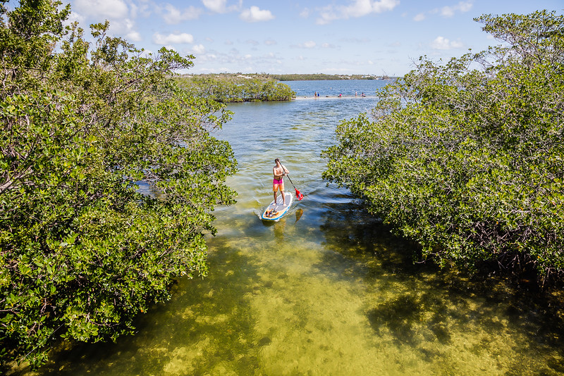 things to do in Key Largo- Stand Up Paddleboarding