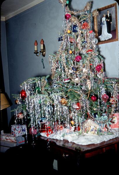 christmas tree on expansion table.jpg