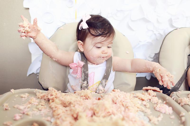 Hannah & Sofia's 1st Birthday