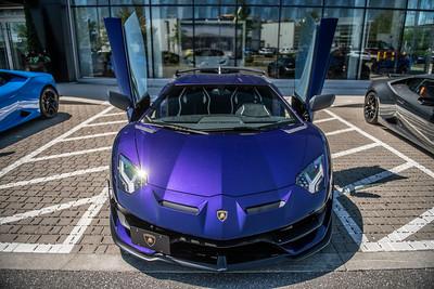 Danny Lamborghini Aventador SVJ