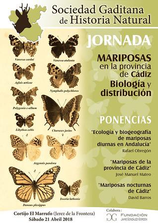 Mariposas de la provincia de Cádiz