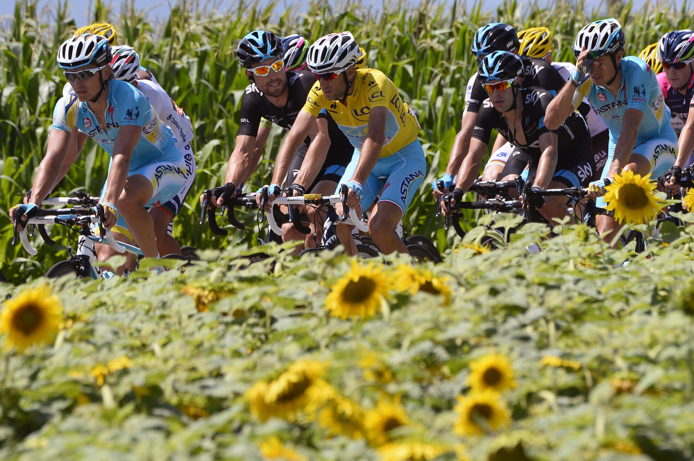 . Italy\'s Vincenzo Nibali (C) wearing the overall leader\'s yellow jersey, Austria\'s Bernhard Eisel (C-L) and Australia\'s Richie Porte (3rdR) ride in the pack past a sunflowers field during the 197.5 km thirteenth stage of the 101st edition of the Tour de France cycling race on July 18, 2014 between Saint-Etienne and Chamrousse, central eastern France.  (LIONEL BONAVENTURE/AFP/Getty Images)