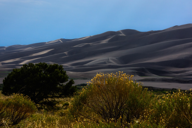 Great Sand Dunes-55.jpg