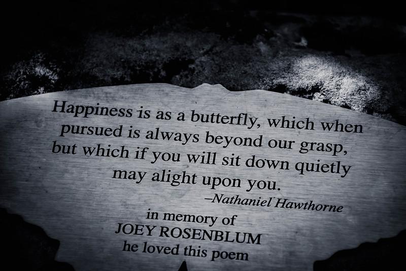 butterfly house st louis missouri