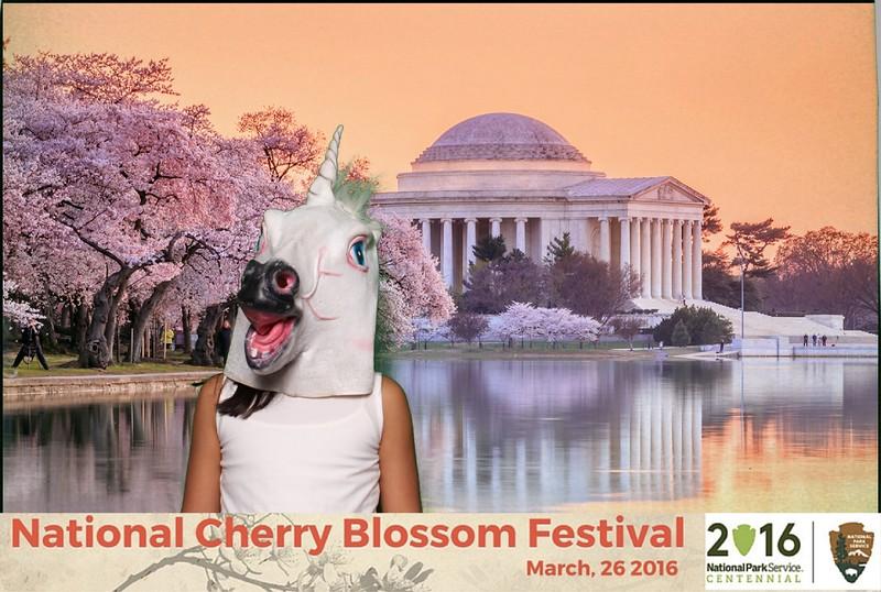 Boothie-NPS-CherryBlossom- (486).jpg