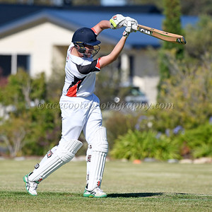 Kingston Cricket - BATTING  28/01/2017