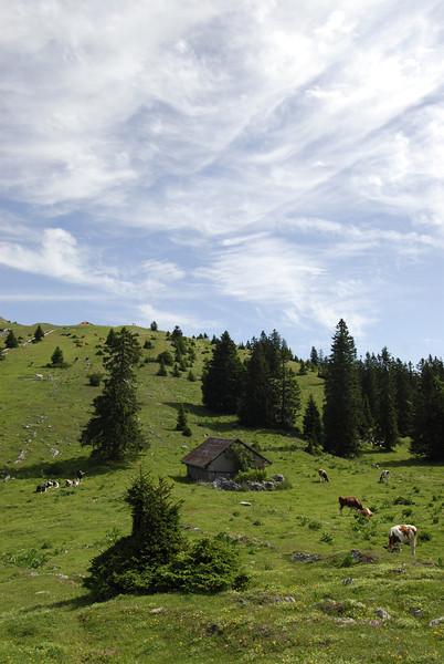 070626 7253 Switzerland - Geneva - Downtown Hiking Nyon David _E _L ~E ~L.JPG