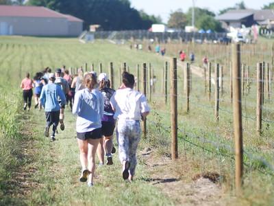 Run the Vineyards - Yoga Endurance Challenge - 2021
