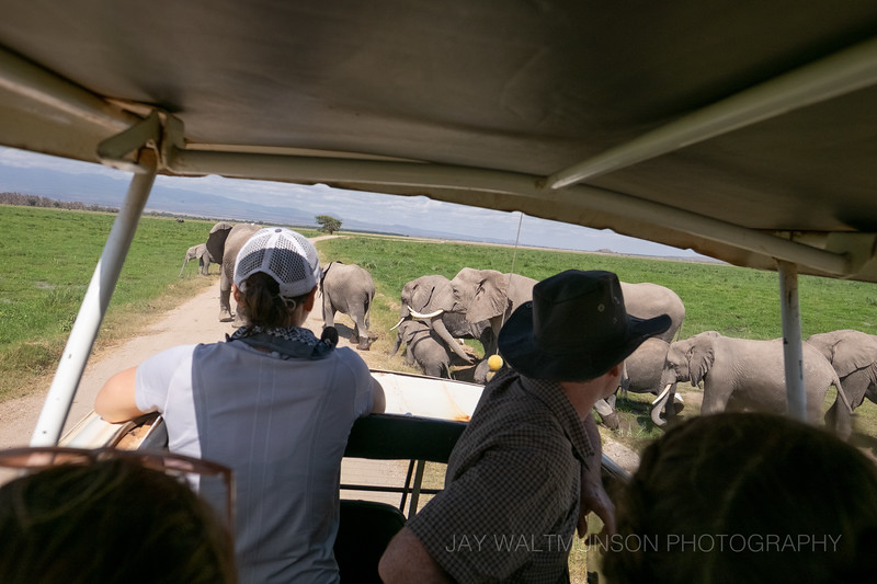 Jay Waltmunson Photography - Kenya 2019 - 151 - (DXT19322).jpg