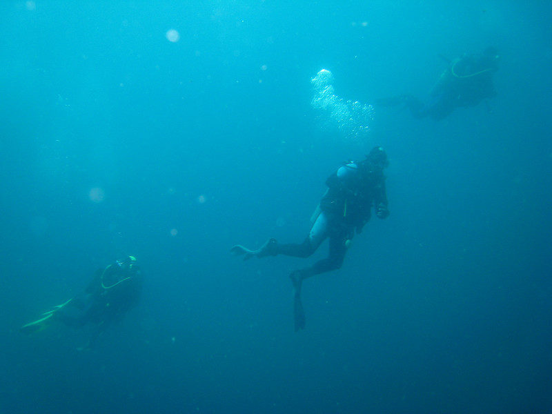 Diving in the Galapagos (274 of 392)