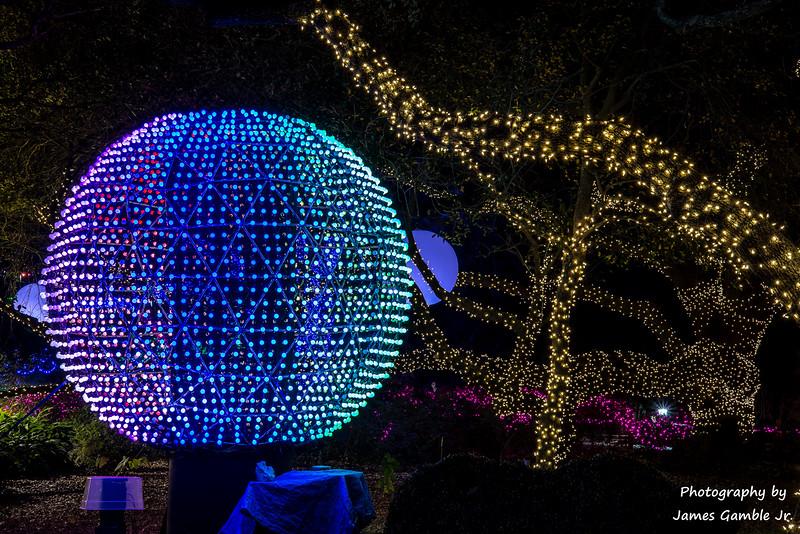 Houston-Zoo-Lights-3122.jpg