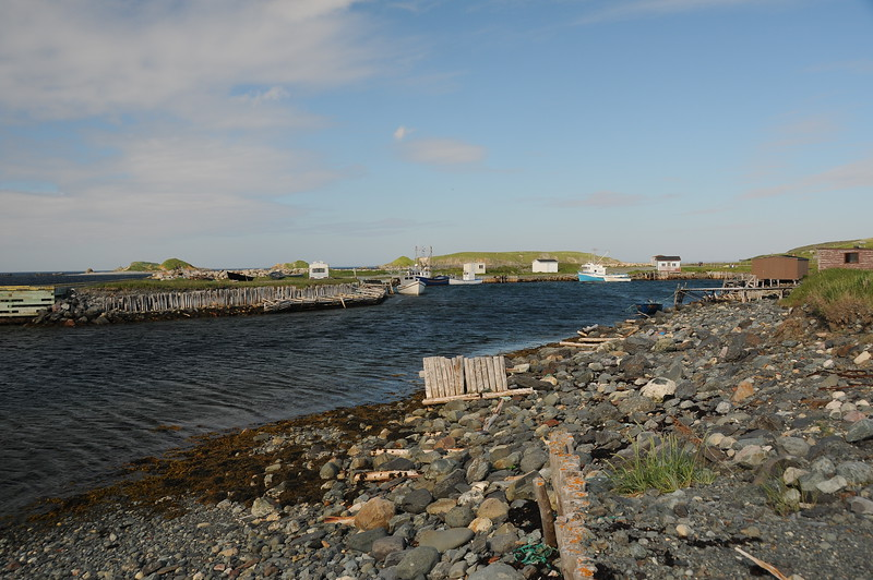 While driving back from Sandy Cove we pull over one final time before Aquaforte at this tiny inlet of Ferryland's harbour entrance.