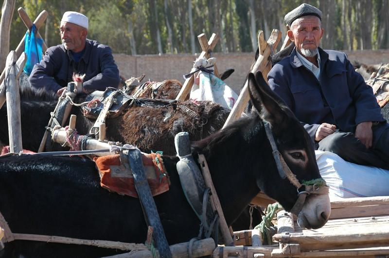 Uighur Men at Kashar Sunday Market  - China