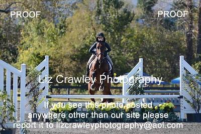 10.26.2018 BRHJA CLASSIC HORSE SHOW