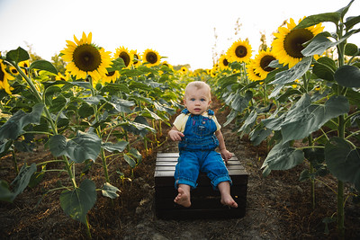 Kayla Smith and family sunflowers