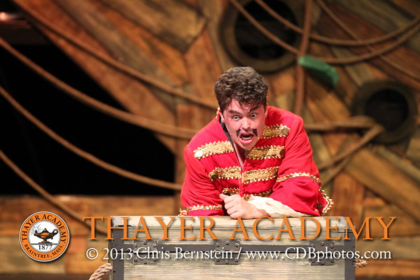 Peter and the Starcatcher       4/26/17