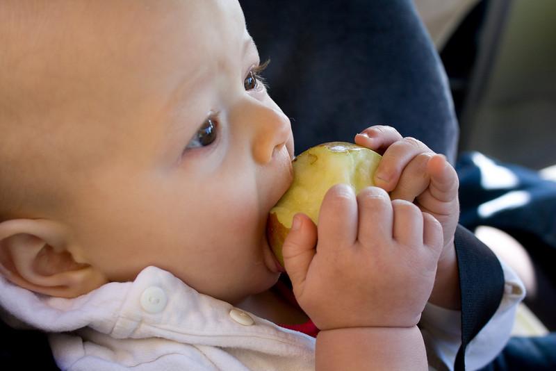 Quinton enjoys a tasty apple