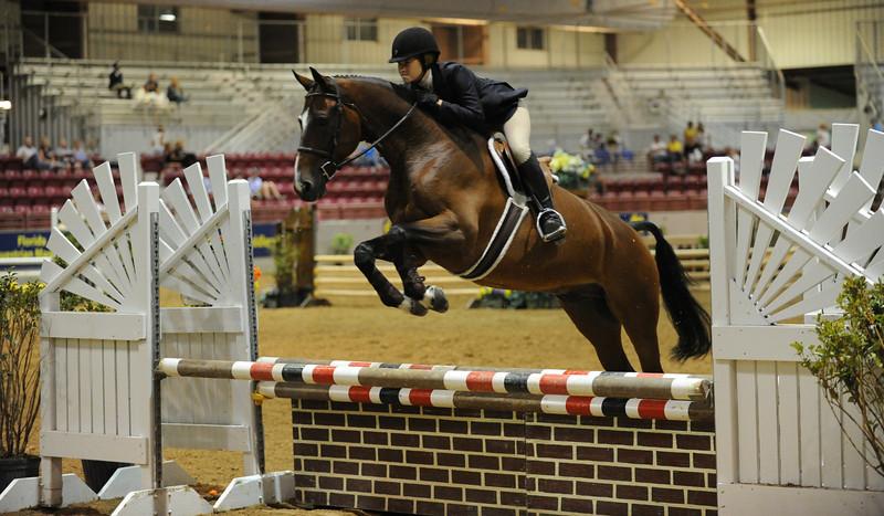 Horse show (31).jpg