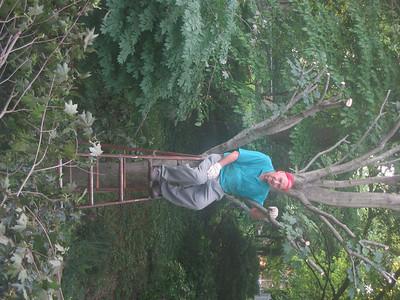 2006 Lumberjack Papa