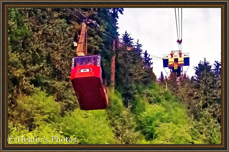Juneau - Mt Roberts Tramway-2.jpg