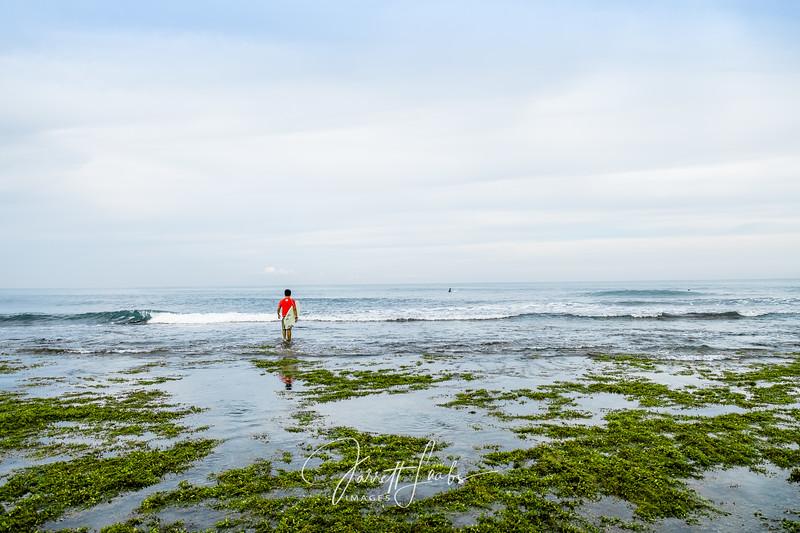 surfer-3665.jpg
