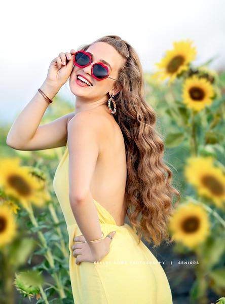 Sunflower 1040-2.jpg