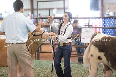 Showmanship - Senior