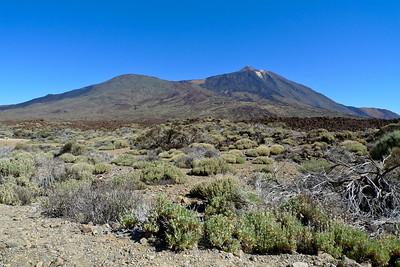 Tenerife 2010