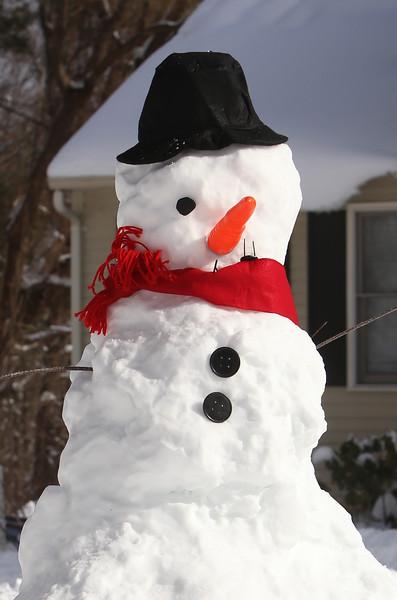 Chelmsford snowmen 020421
