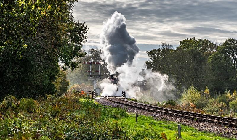 Bluebell Railway - Giants of Steam-87440-Edit.jpg