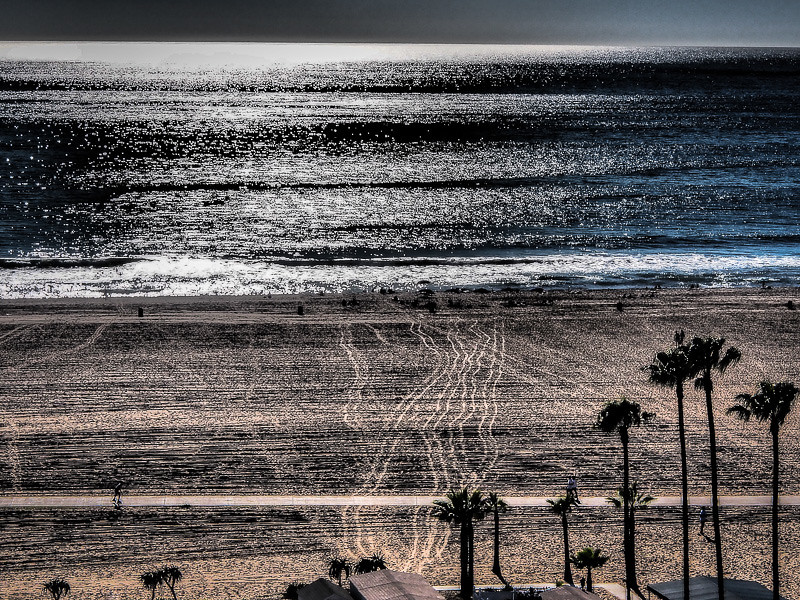 February 13 - Paths_ Santa Monica_ CA.jpg