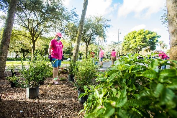Gardening Club Veterans Park 102720