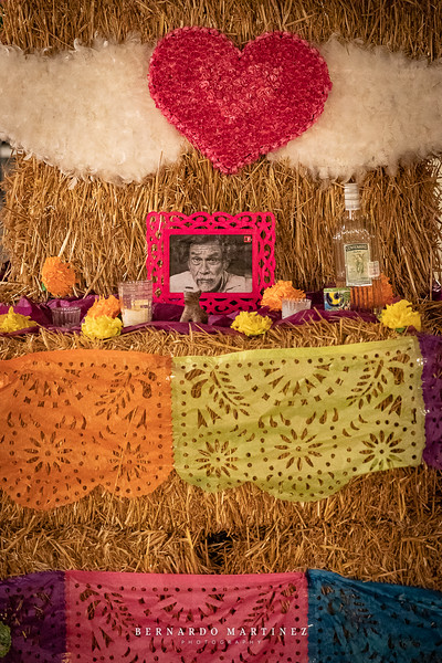 Flora Farms Muertos -100 -www.bernardomartinezphoto.com.jpg