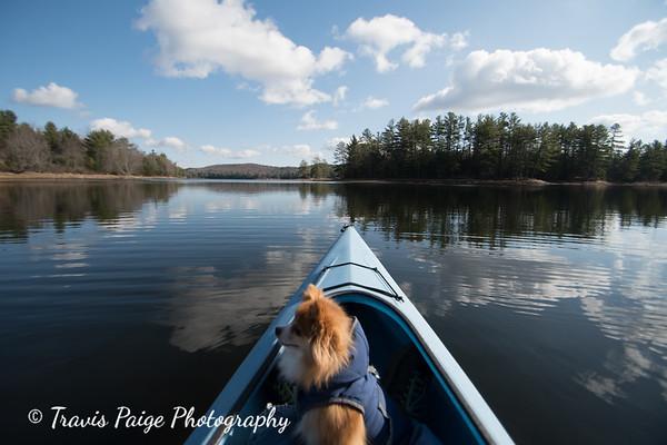 Late Fall at Grafton Pond