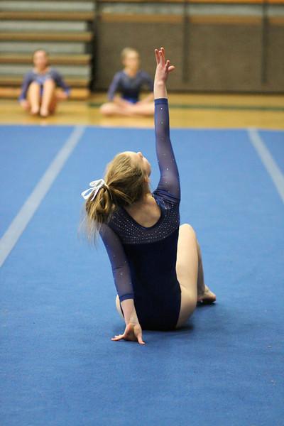 2014_03_27 Gymnastics LCC vs Westview Web 0034.JPG