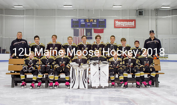 Maine Moose Hockey 12U