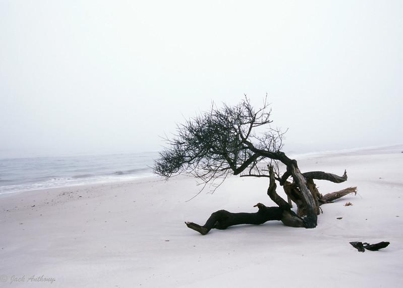 20120916-beach1.jpg