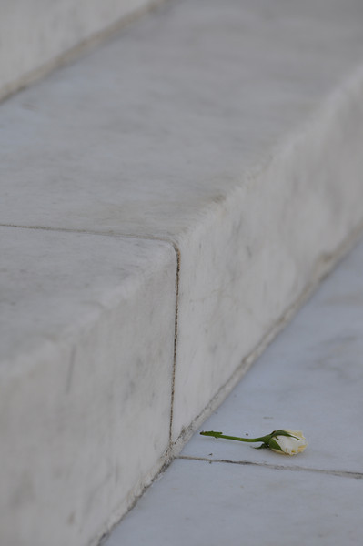 The flower was on the steps of the amphitheater ...don't think I framed it well...but o well.