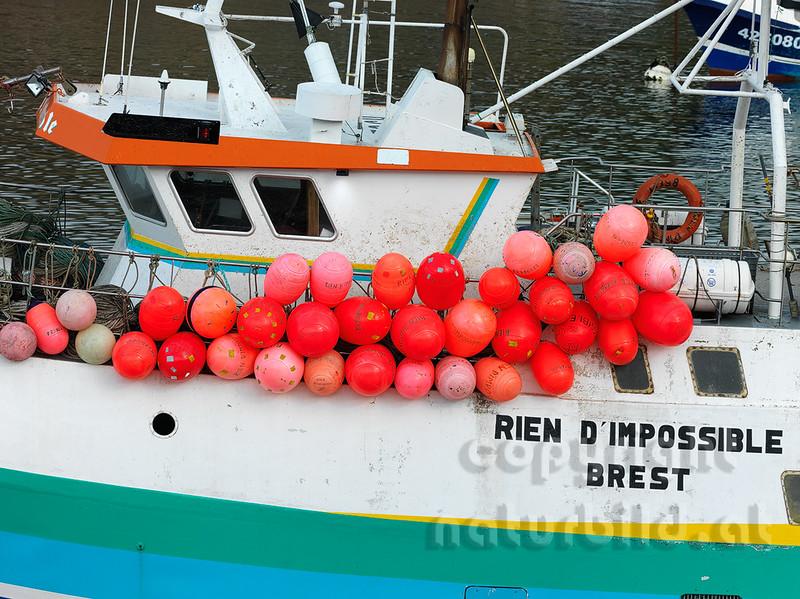 16B-03-113 - Rote Bojen am Fischkutter