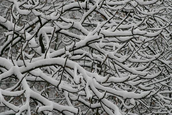 101 Pattern Images • by Atlanta Photographer Dan Smigrod