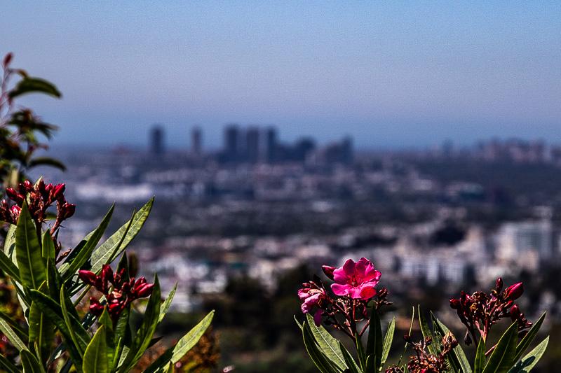 August 8 - The great Los Angeles basin.jpg