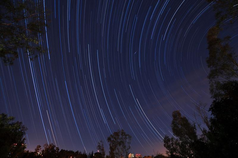 Zoo_star_trails.jpg