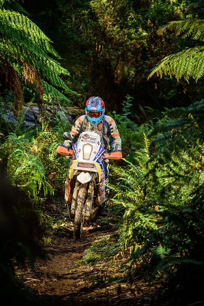 2019 KTM Australia Adventure Rallye (940).jpg