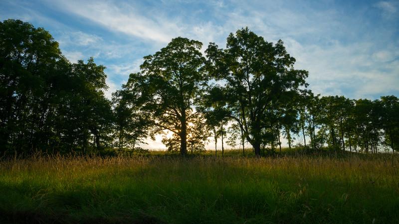 Medina County Parks