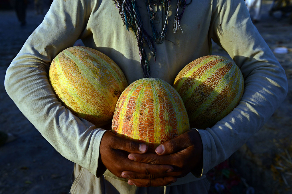 . An Afghan street vendor holds melons as he wait for customers on a road side near a market ahead of the Islamic holy month of Ramadan, in Kabul, on June 28, 2014. During Ramadan, Muslim believers abstain from eating, drinking, smoking and having sex from dawn until sunset. Ramadan is sacred to Muslims because it is during that month that tradition says the Koran was revealed to the Prophet Mohammed. The fast is one of the five main religious obligations under Islam. WAKIL KOHSAR/AFP/Getty Images