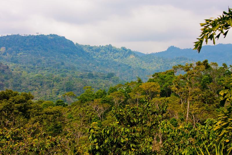 Nature in Chiapas 3:Journey into Chiapas Mexico