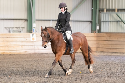 Wessex RC - Dressage 27th October 2019